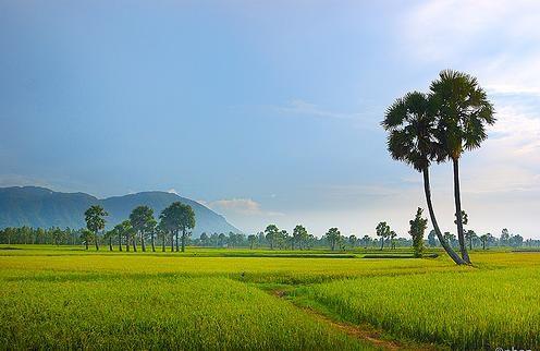giới thiệu các địa điểm du lịch ở Việt Nam, đã ghé sẽ không muốn rời