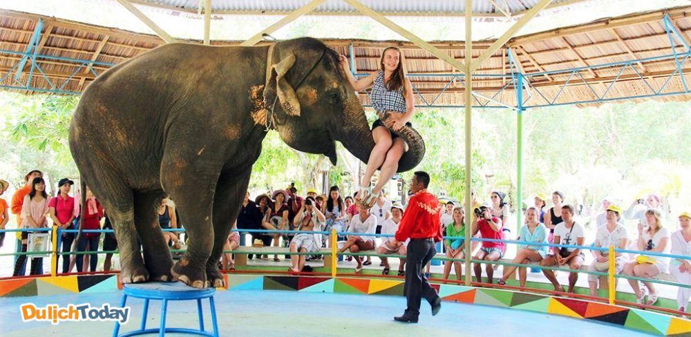 Hướng dẫn đi du lịch Nha Trang 1 ngày thật tuyệt