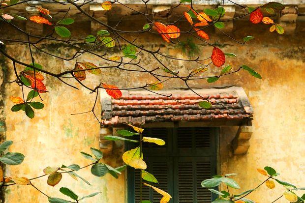 Du lịch mùa thu Hà Nội có gì hấp dẫn?