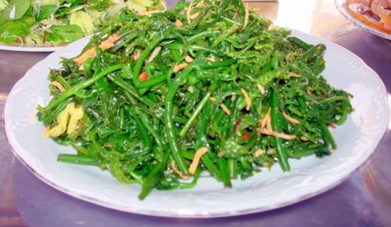 rau rừng, rau dớn và cách chế biến, rau dớn bán ở đâu, bán rau dớn tại hà  nội