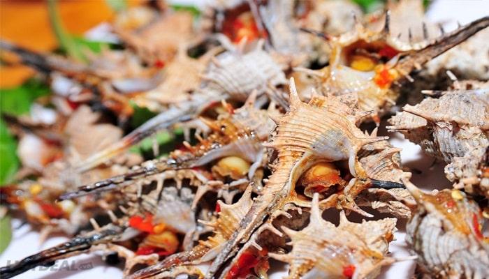 Ốc gai Phú Quốc