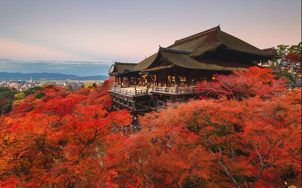 toàn cảnh di tích cố đô Kyoto